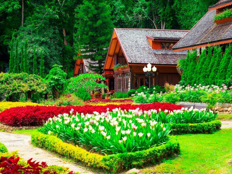تفسير حلم الحديقة أو التنزه